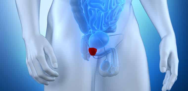Câncer de próstata um tabu que ainda deve ser quebrado para o bem da saúde dos  homens